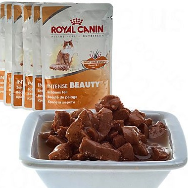 Royal Canin Intense Beauty in Saus