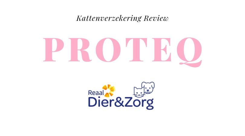 Kattenverzekering Review Proteq