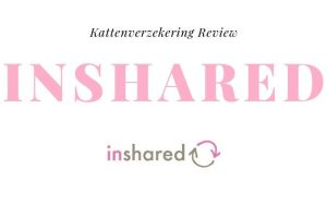 Kattenverzekering Review InShared