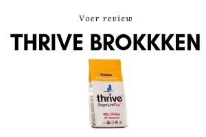 Thrive brok Review