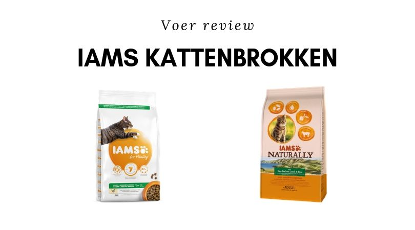 Voer review Iams Adult brok