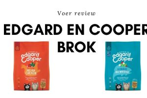 Edgard en Cooper Brok review