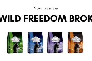 Wild-Freedom-Brok-review