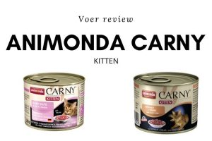 Animonda Carny Kitten Review