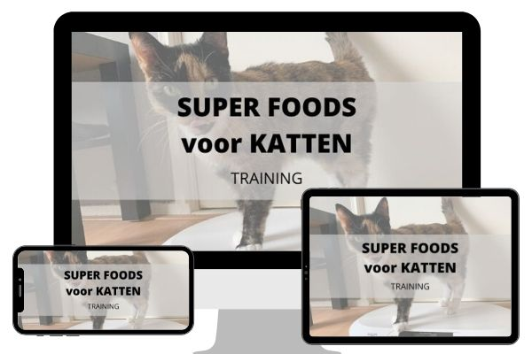 SUPER FOODS Voor Katten training