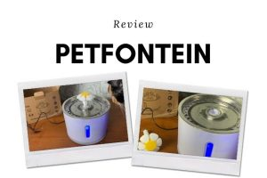 PetFontein-Review